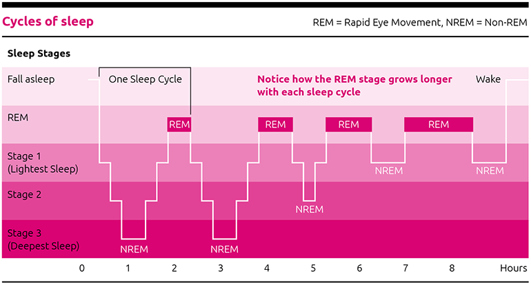 What are the stages of sleep? insomnia
